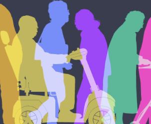 BID05 Disability Perspective- BD II